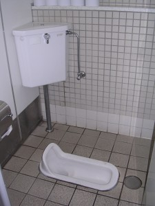 Washiki (traditional Japanese toilet)